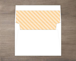 Modern striped Envelope Liner