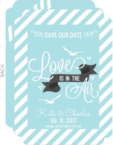 Soft Blue Stripes Photo Save the Date
