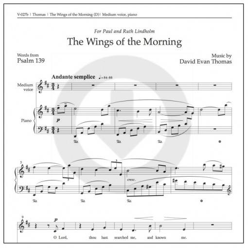 Wings of the Morning medium download product image