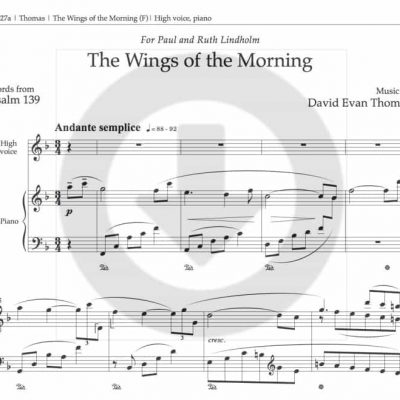 Wings of the Morning download product image