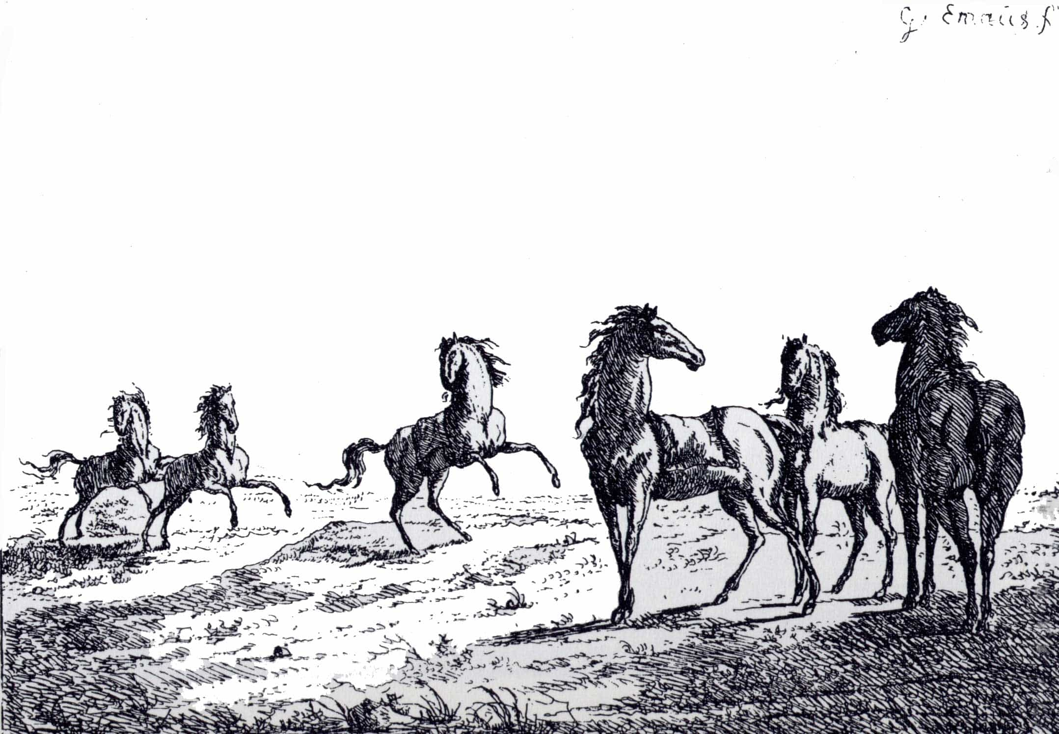 drawing of horses