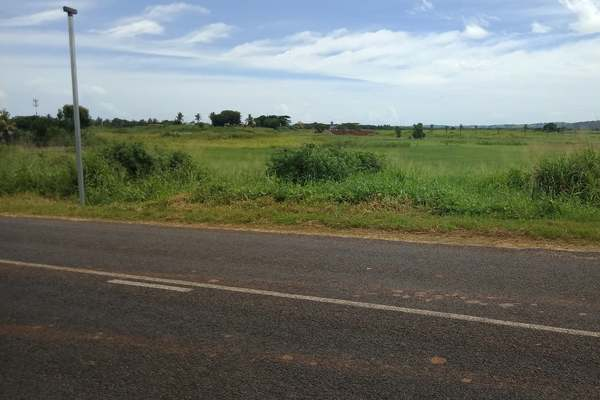 1/4 Acre Residential Land For Sale in Nasoso