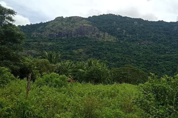 1/2 Acre Residential Land For Sale in Wailoko Road Natalau
