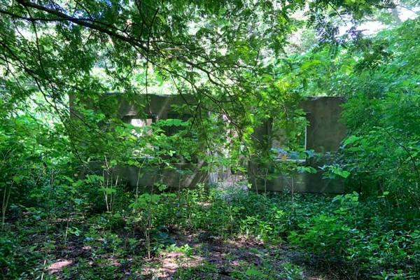 Agricultural Farm Land For Sale