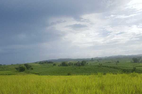 9 Acres For Sale Lomawai !!