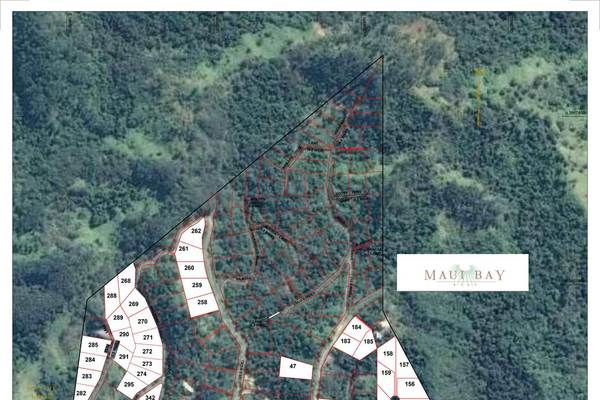 Vacant Freehold Oceanic View Lot
