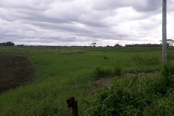 2 Acres Farm Land for Sale