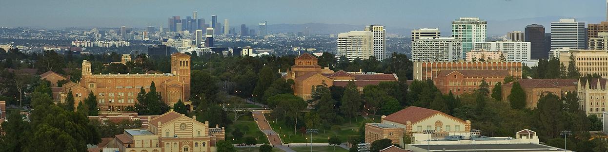 University of California, Los Angeles Banner