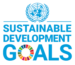 Invest Yourself: Advancing the UN's 2030 Sustainable Development Goals