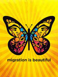 Immigration & Asylum Support Research