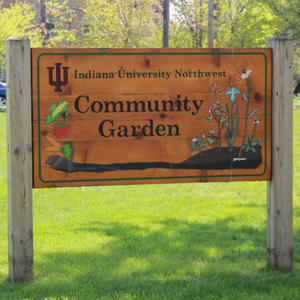 IUN Community Garden