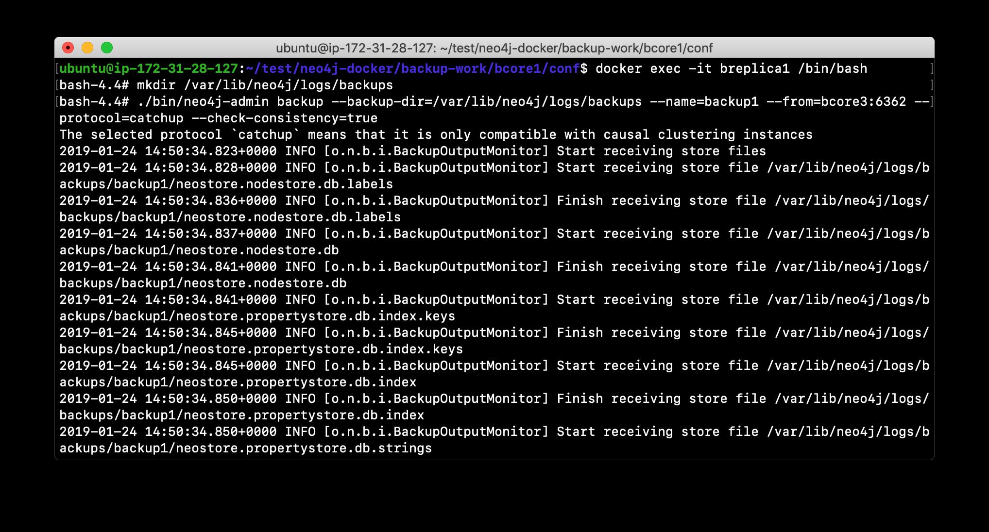L04-Ex6_Backup1
