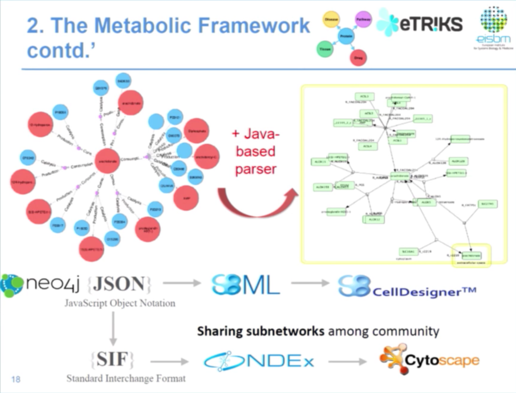 A data management integration for the human metabolic framework