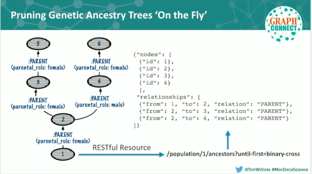 Pruning a genetic ancestry data tree