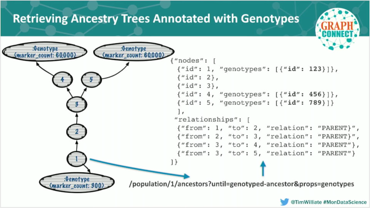 Genotype annotation in a genetic ancestry data tree