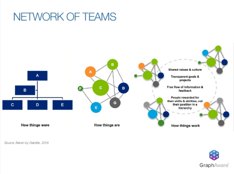 An organizational chart of a network of teams