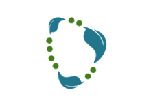 Spring Data Neo4j - Neo4j Graph Database Platform
