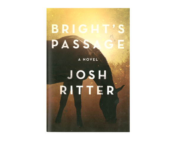 Bright's Passage Hardcover Book thumb
