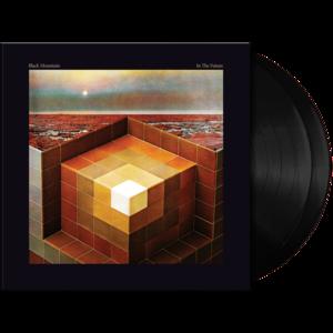 In The Future Vinyl 2xLP thumb