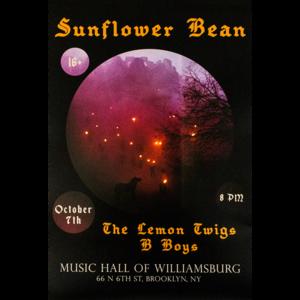 Music Hall of Williamsburg Show Poster thumb