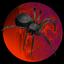 Rezz spidermoon poh 2