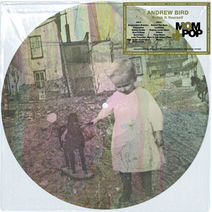 Andrew Bird: Break It Yourself Picture Disc thumb