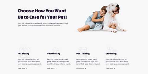 Pet Sitting Astra Starter Site - Highlighted services