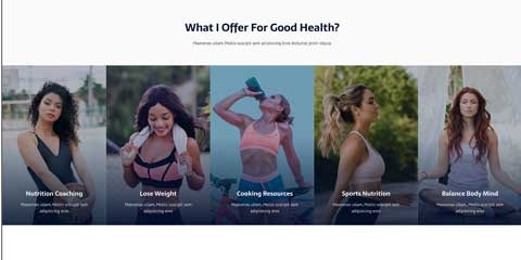 Nutritionist Astra Starter Site - One-glance overview