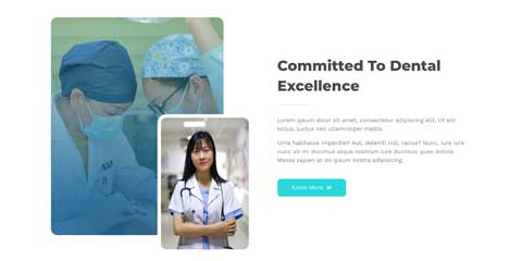 Dentist Astra Elementor Starter Site - Introduce yourself