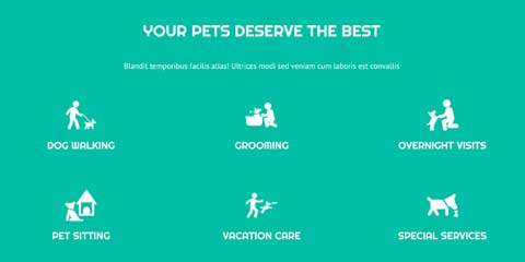 Pet Boarding Astra Starter Site - Convenient services overview
