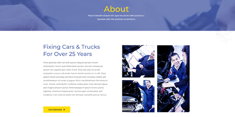 Car Repair Astra Starter Site - About section