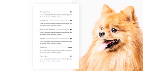Pet Care Astra Elementor Starter Site - Neat pricing tables