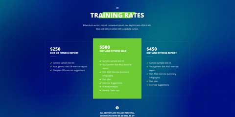 Fitness Astra Elementor Starter Site - Clean rates overview