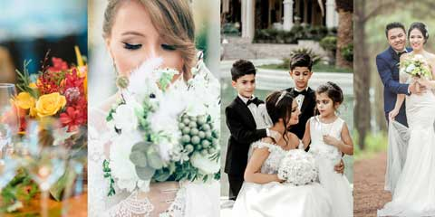 Wedding Planner Astra Starter Site - Appealing image gallery