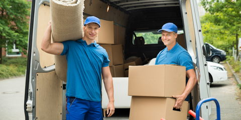 Moving Company Astra Elementor Starter Site - Made for movers