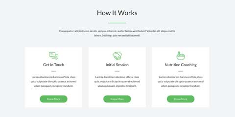 Dietitian Astra Elementor Starter Site - How It Works