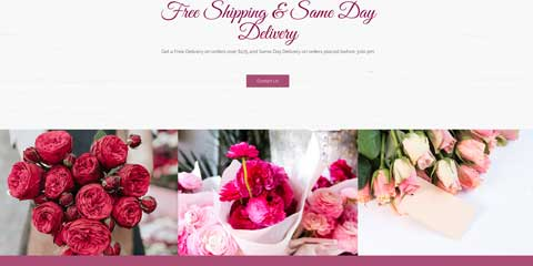 Florist Astra Starter Site - Stunning photo gallery