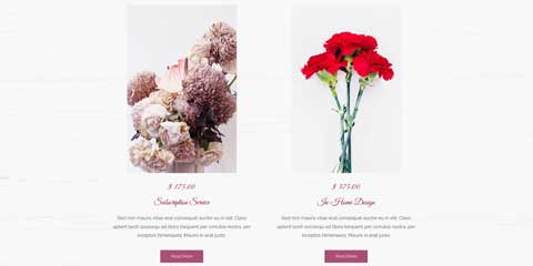 Florist Astra Starter Site - Your services online
