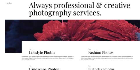 Photography Portfolio Astra Starter Site - Overview of services