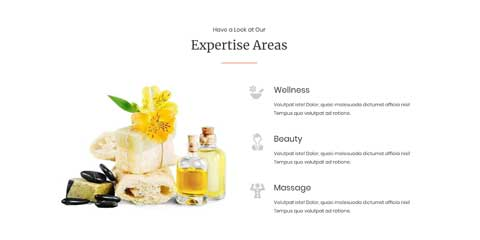 Spa Astra Elementor Starter Site - Unique Selling Proposition