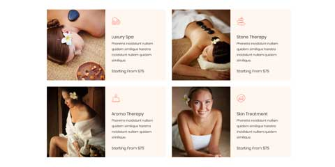 Spa Astra Elementor Starter Site - Ongoing rates