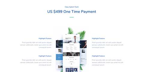 Design Agency Astra Elementor Starter Site - Neat pricing tables