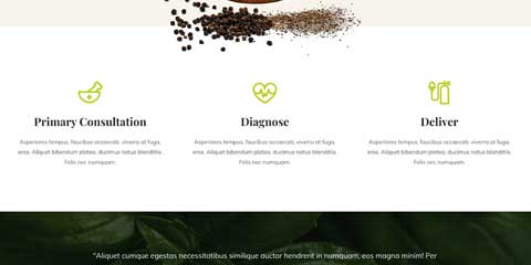 Ayurveda Astra Starter Site - One-glance overview