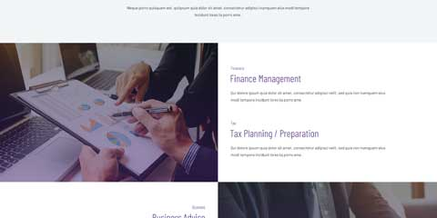 Financial Services Astra Starter Site - Highlighted services