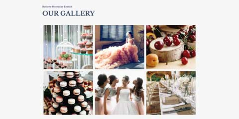 Event Manager Astra Elementor Starter Site - Dazzling image gallery