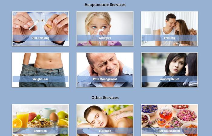 Acupuncture WordPress Theme - Overview of services