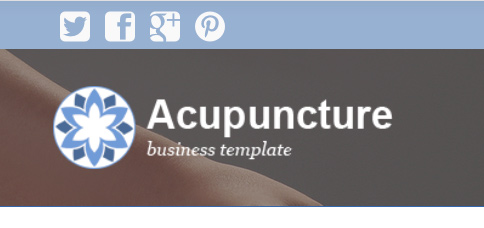 Acupuncture WordPress Theme - Social media integration