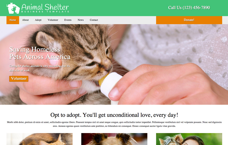 Animal Shelter WordPress Theme - Image slider