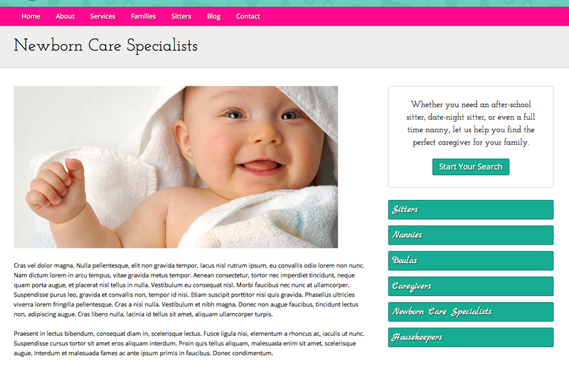 Babysitter WordPress Theme - Detailed service pages