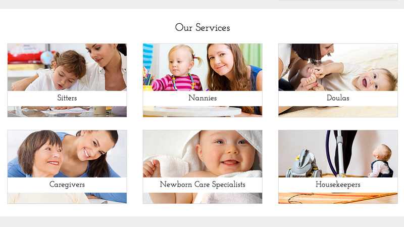 Babysitter WordPress Theme - Overview of services